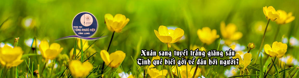 Spring-A